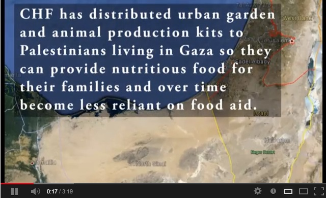 Assisting Food Insecure Families in Gaza (video)